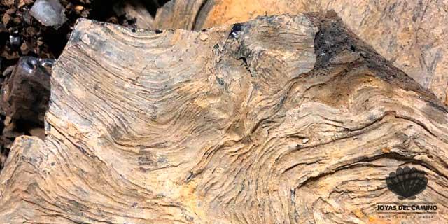 Tronco de azabache en bruto Asturias